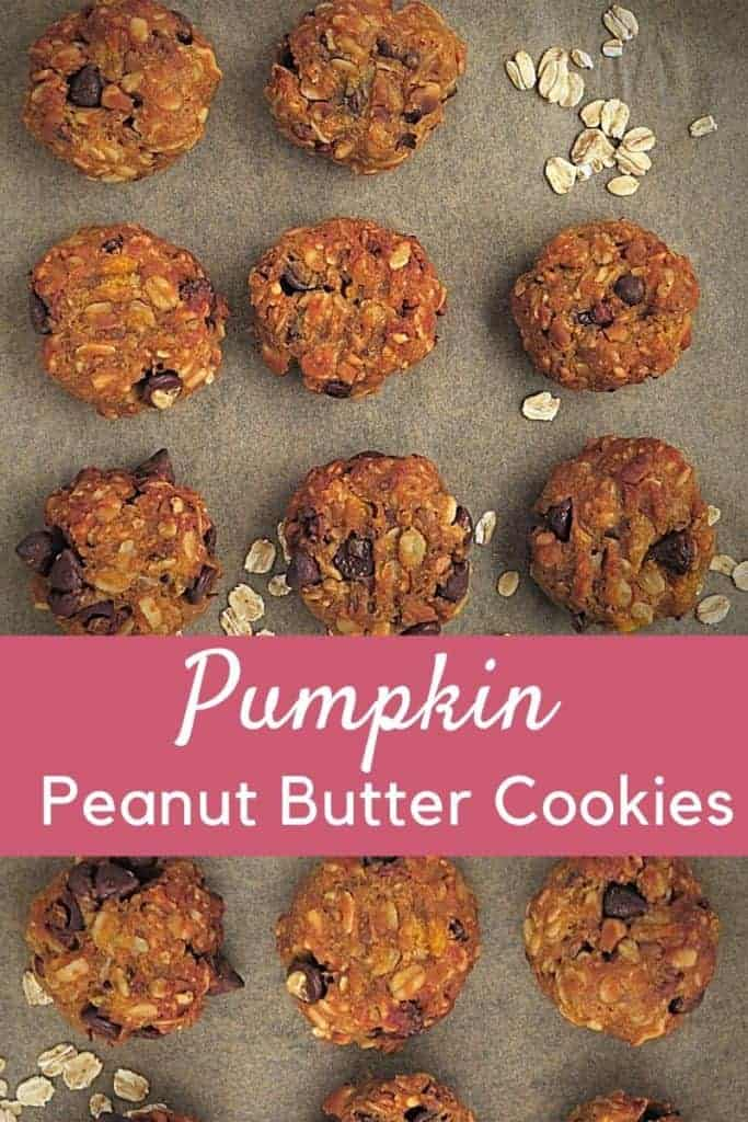 Pumpkin Peanut Butter Cookies with Chocolate Chips